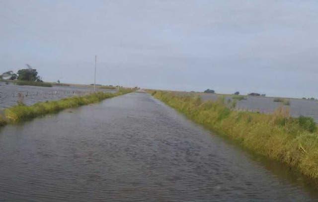 Un mar. Los caminos rurales, cubiertos por el agua