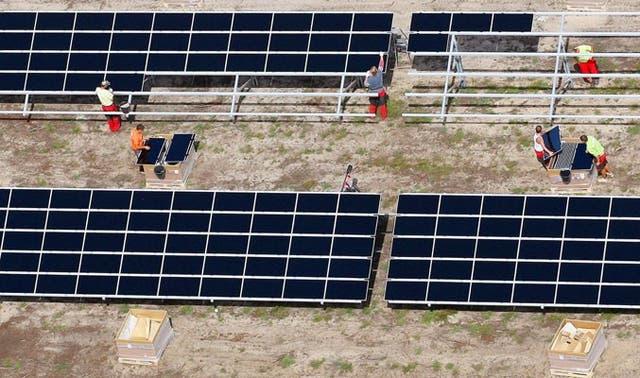 Un grupo de obreros trabajan en la instalación de paneles solares más grande de Alemania, en la localidad de Lieberose