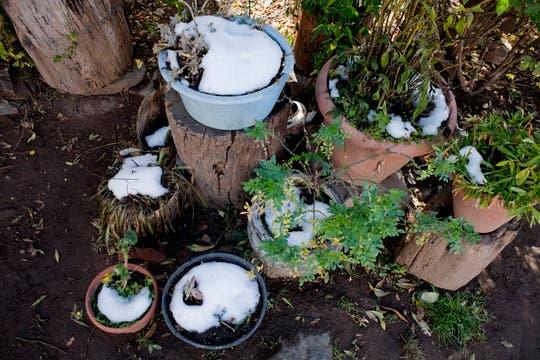 La nieve en las macetas de la casa de Paula, muestran que el clima es bastante hóstil. Foto: LA NACION / Rodrigo Néspolo/Enviado especial