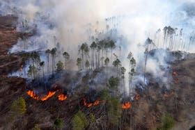 Las llamas continuaban afectando esta noche la zona de Villa Calamuchita, en Córdoba