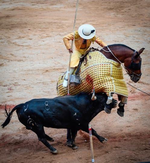 Un toro de combate de Fuente Ymbro sacude un caballo durante la cuarta corrida del Festival de San Fermín. Foto: AFP / Ander Gillenea