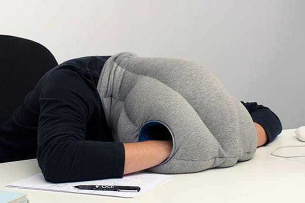 """Una almohada muy especial para los más """"trabajadores""""."""