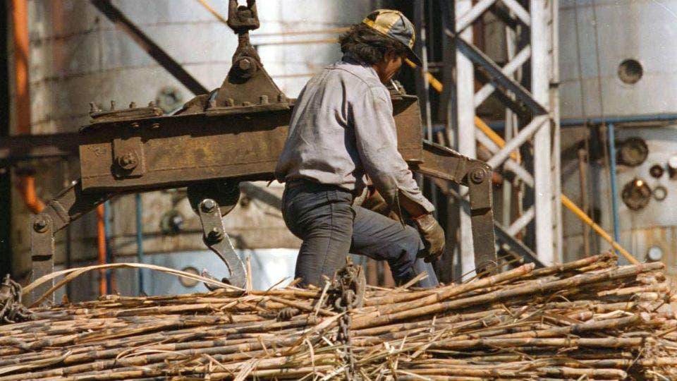 Preocupación en los integrantes del sector azucarero