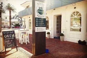 Punta del Este: el cat café en el que los clientes comparten espacio con 19 gatos