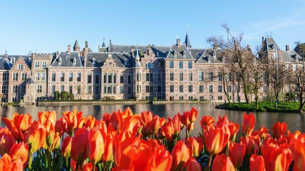 En La Haya se comen productos frescos y solo se consume un 20% de carne por plato