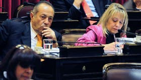 Negre de Alonso dijo que buscará introducir modificaciones en el proyecto para pagar a los holdouts