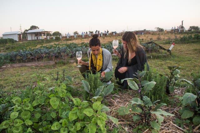 Una larga mesa y un fogón llaman la atención entre cultivos en la chacra de cinco hectáreas de Cruz del Sur