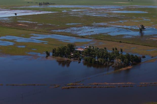 Los excesos hídricos afectan a la campaña