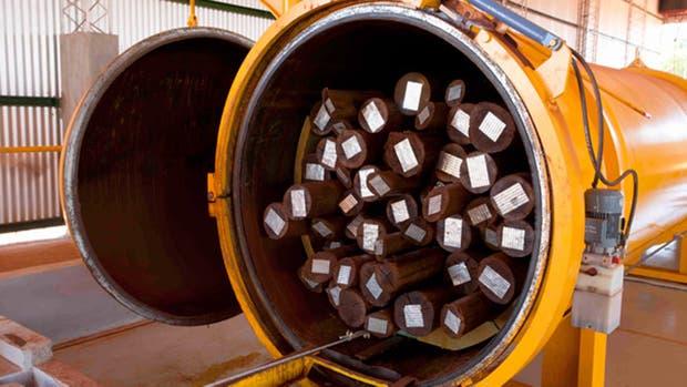 Virasoro tendrá la mayor planta de generación eléctrica con biomasa