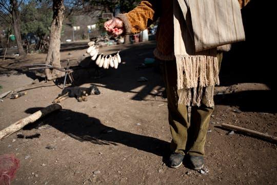 Paula con un puñado de capullos en la mano camina por la árida tierra de lo que es su patio. Foto: LA NACION / Rodrigo Néspolo/Enviado especial