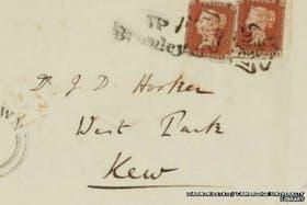 En la cartas, Darwin compartió algunos de sus sentimientos más privados, como la tristeza por la muerte de su nuera o sus reticencias acerca de su trabajo