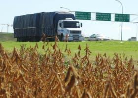 En la Argentina avanza la cosecha de soja
