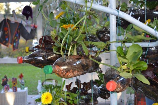El espacio de la Ing. Agrónoma María Alejandra Di Fabio combina diseño con sustentabilidad. En esta foto, una huerta vertical, hecha con botellas colgadas de un perchero.. Foto: Soledad Avaca Cuenca