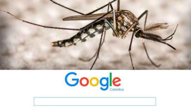El virus transmitido por el mosquito se propaga rápidamente en la región