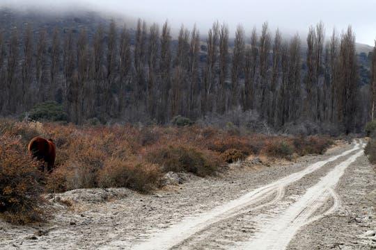 En Argentina la situación mejora lentamente y comienzan a restablecerse los servicios. Foto: AFP