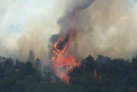 Los incendios en Neuquén afectan a varias localidades