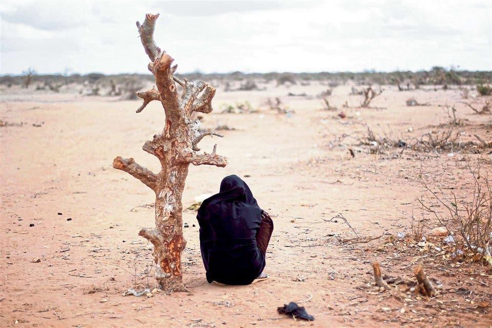 Cerca de la ciudad keniata de Dadaab, la sequía hace estragos foto: Archivo AP
