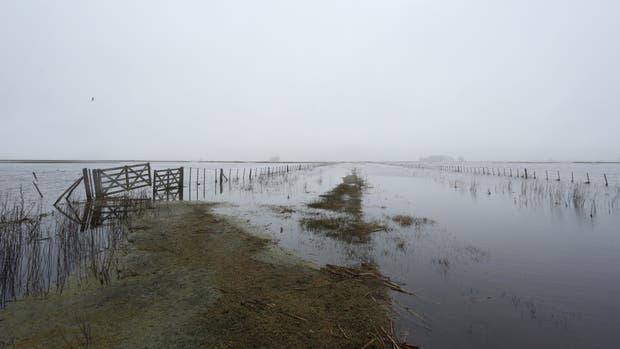 La inundación cubre el 100% de los campos en Bolívar, según los productores
