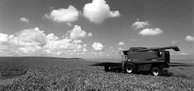 La cosechadora de granos Axial Flow 2388
