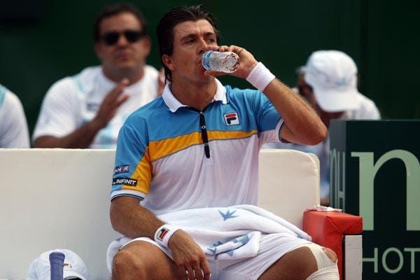 La Argentina derrotó a Francia por 3 a 2 y es semifinalista de la Davis.  /Mauro Alfieri