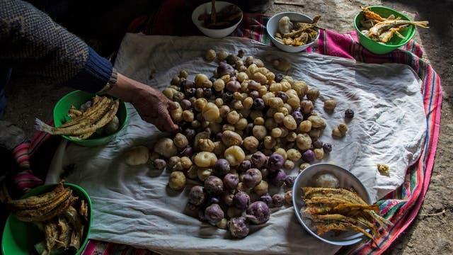 La familia Ávila prepara su almuerzo de patatas y pescado en el piso de su casa en Coata, un pequeño pueblo a orillas del lago Titicaca, en la región de Puno, Perú