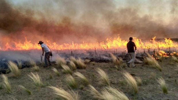 Un millón de hectáreas incendiadas en La Pampa