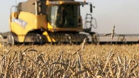 Prevén menores cosechas globales por el mal clima