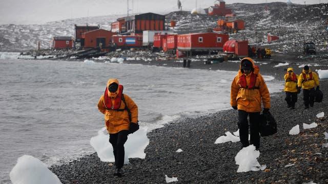 Cientificos y militares caminan por la costa de la Caleta Poter hacia el punto de encuentro para embarcar rumbo a la base Frei en el final de la campaña Antartica. Foto: LA NACION / Fernando Gutierrez