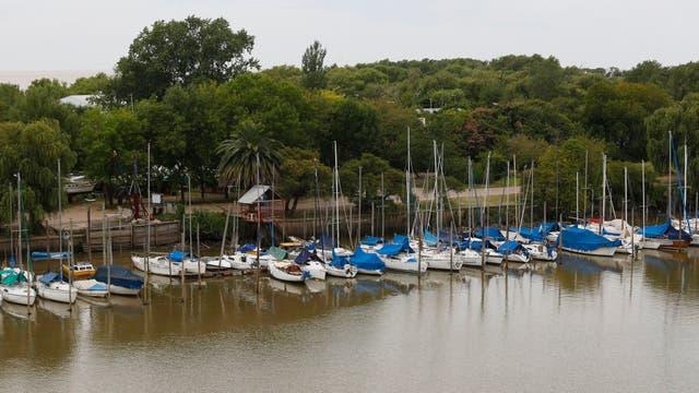 Más verde en San Isidro: renovarán el puerto con un parque público
