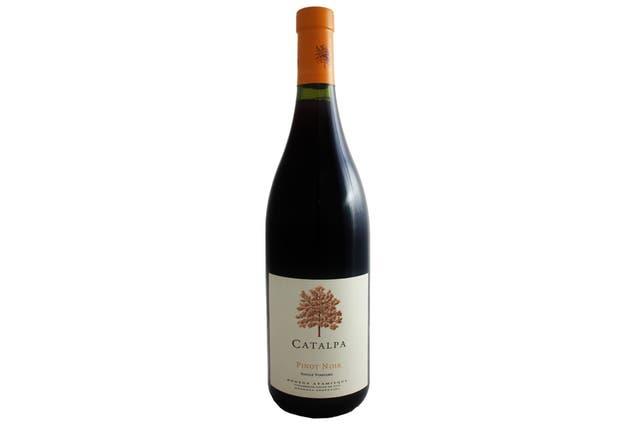 Catalpa Pinot Noir 2015