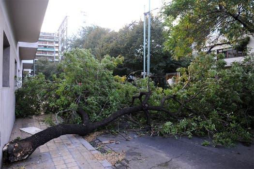 Los destrozos que dejó el temporal en Buenos Aires y el conurbano. Foto: Télam