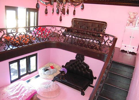 ¿La casa de Paris Hilton? No, la casa del perro de Paris Hilton.. Foto: Twitter