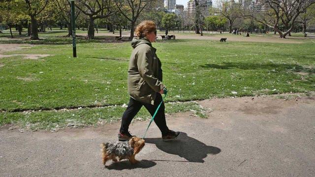 Hoy, el espacio verde está libre de obradores