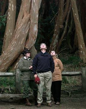 Bill y Hillary, en el Bosque de Arrayanes. Foto: AP