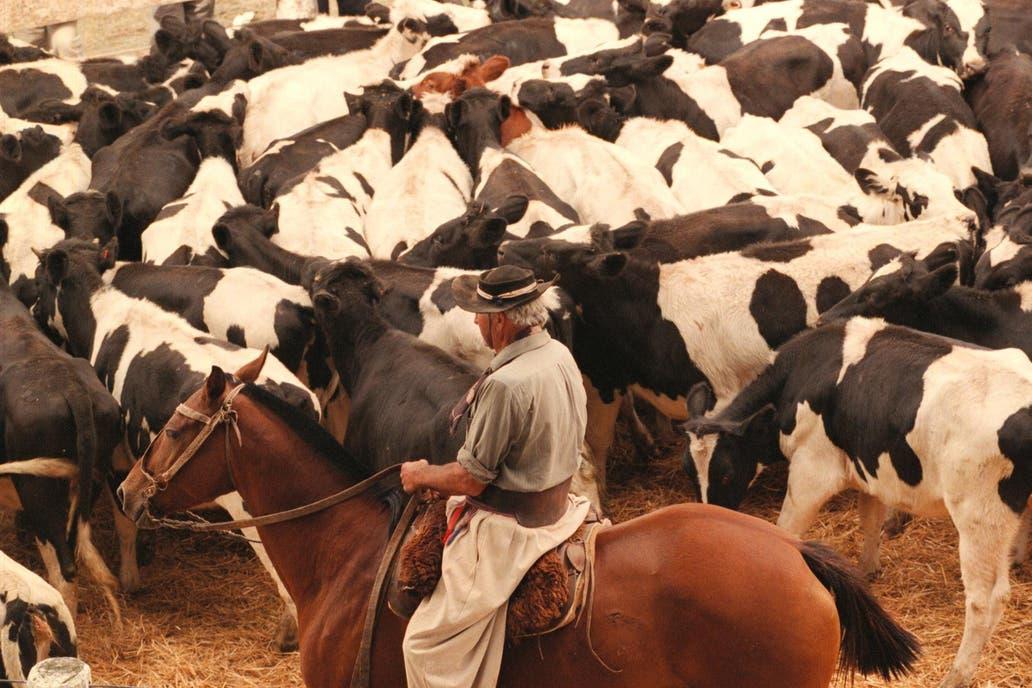 Cierran una planta de lácteos en Santa Fe