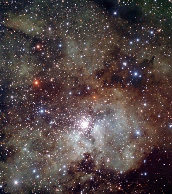 El universo, fuente de inspiración para Saraceno