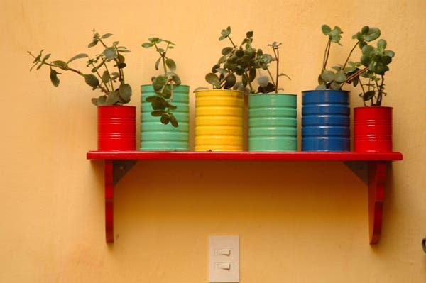 Reciclá latas para hacer macetas divertidas. Foto: Gentileza Ernestina Anchorena