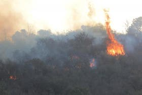 Las llamas ya afectaron en las sierras de Córdoba cerca de 15 mil hectáreas