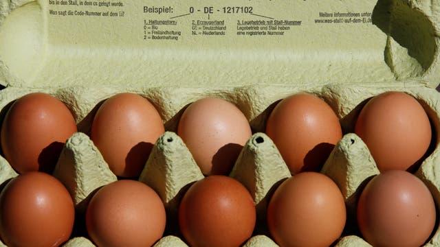 Los huevos tendrían fipronil, una molécula prohibida en el tratamiento de animales destinados a la cadena alimentaria