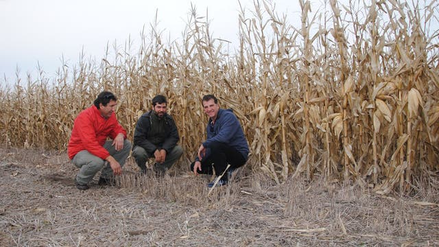 Guillermo Álvarez, Mariano Carman y Adrián Sánchez apuestan al manejo de la agricultura por ambientes