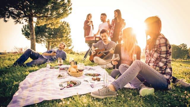 Esta es una época ideal para organizar un picnic entre amigos