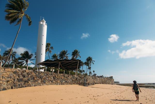 Praia do Forte. Denise Giovaneli
