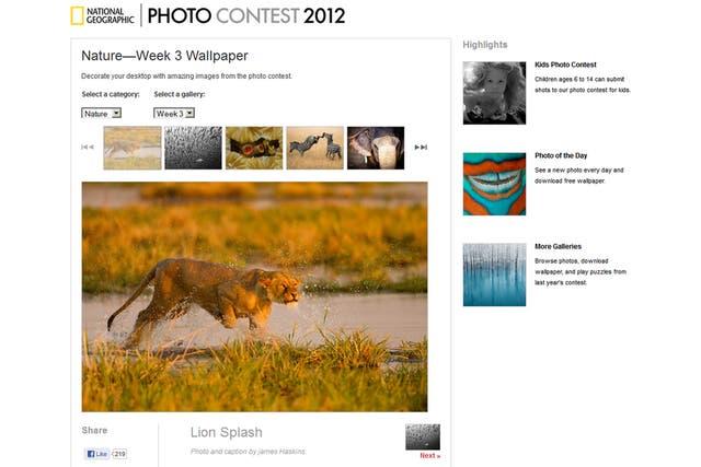 El sitio del National Geographic recopila imágenes para todos los amantes de los fondos de pantalla relacionados con la naturaleza y los paisajes