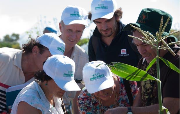 Tras el recorte impuesto por el Ministerio de Agroindustria de la Nación, fueron dados de baja de Cambio Rural 880 grupos