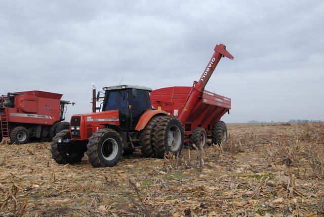 Mayor peso del Estado en la renta agrícola del sector