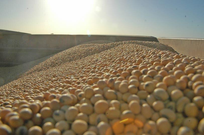 En su nuevo informe mensual de oferta y demanda de granos, el Departamento de Agricultura de los estados Unidos elevó sus proyecciones sobre las reservas de ambos granos; para América del Sur aumentó su previsión sobre la cosecha de soja brasileña y bajó su cálculo para la Argentina