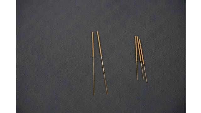 Las agujas de la acupuntura usadas para el tratamiento de las mascotas