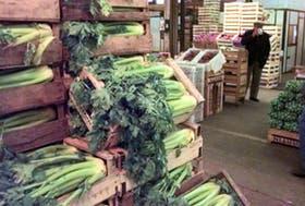 En el Mercado Central, la actividad se redujo un 90 por ciento