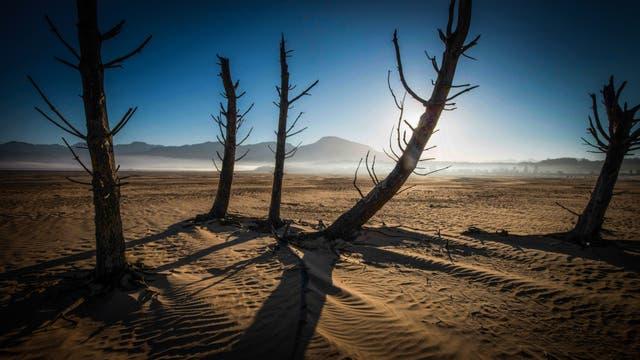 La Represa Theewaterskloof que tiene menos del 20 por ciento de su capacidad, es la principal fuente de agua de Ciudad del Cabo. La región del Cabo Occidental de Sudáfrica declaró un desastre de sequía el 22 de mayo, mientras lucha contra la peor escasez de agua de los último 113 años