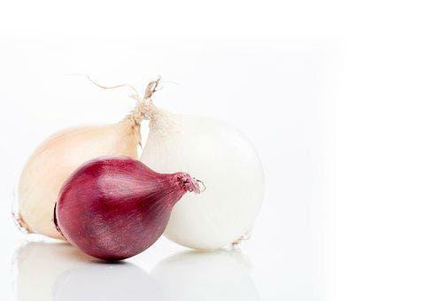 Cebollas (Pixabay)